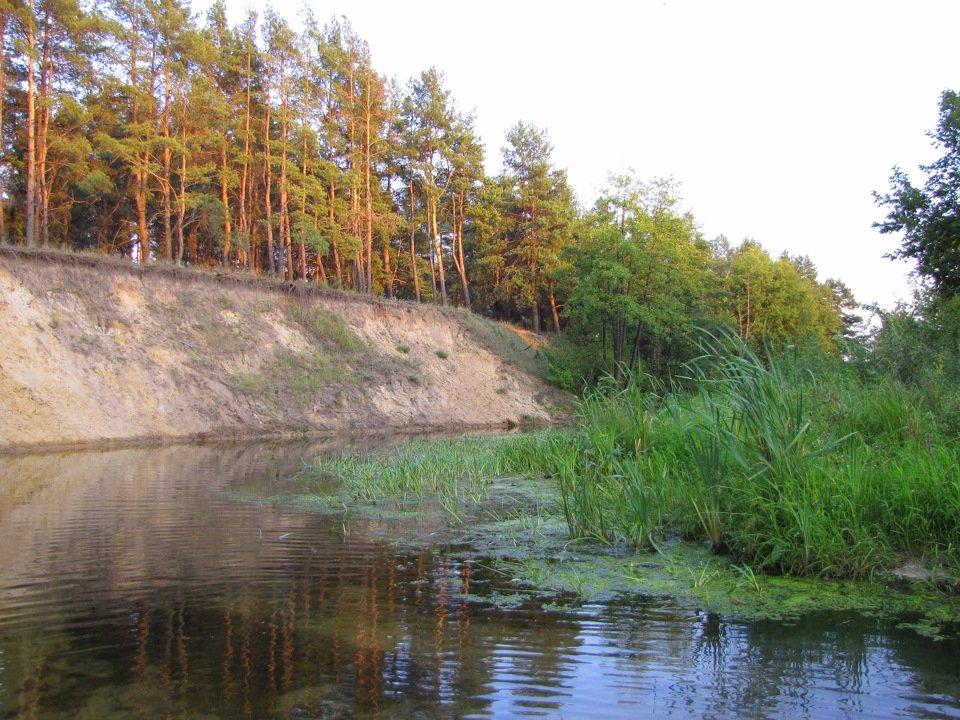 река Потудань фото