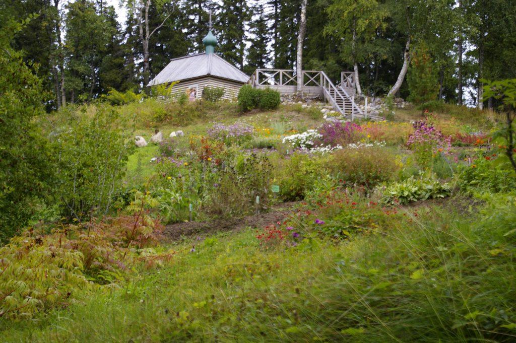 Ботанический сад на Соловках